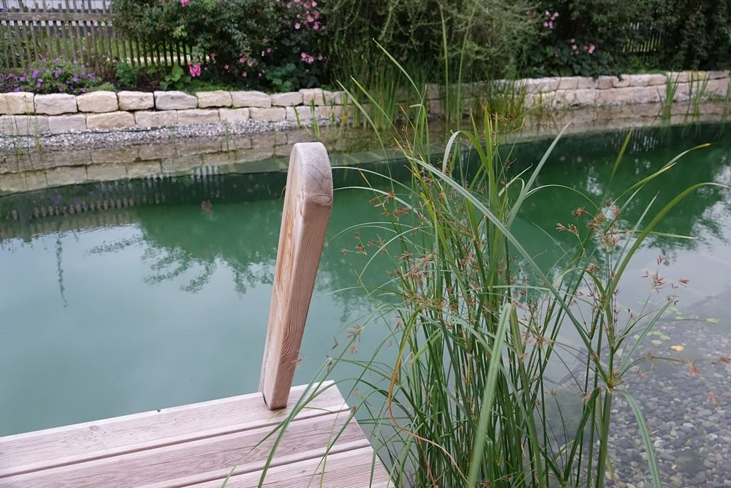Fertiger Schwimmteich