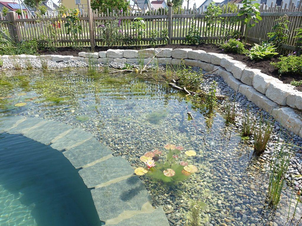 Fertiger Schwimmteich, Kiesbett mit Wasserpflanzen