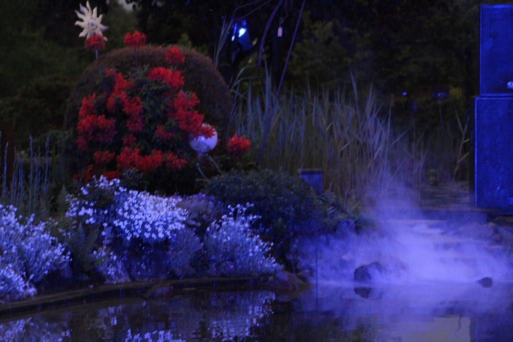 Dampfender Teich im blauen Licht