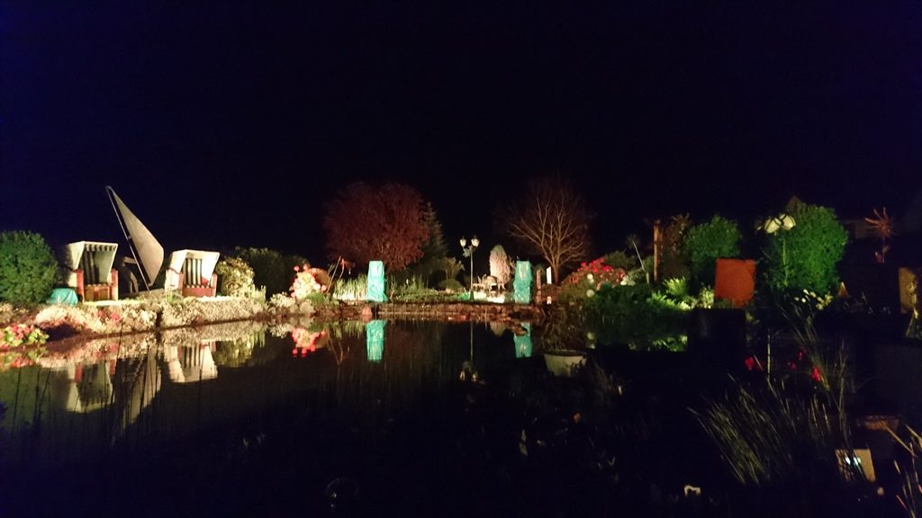 Fertiger Teich bei Nacht