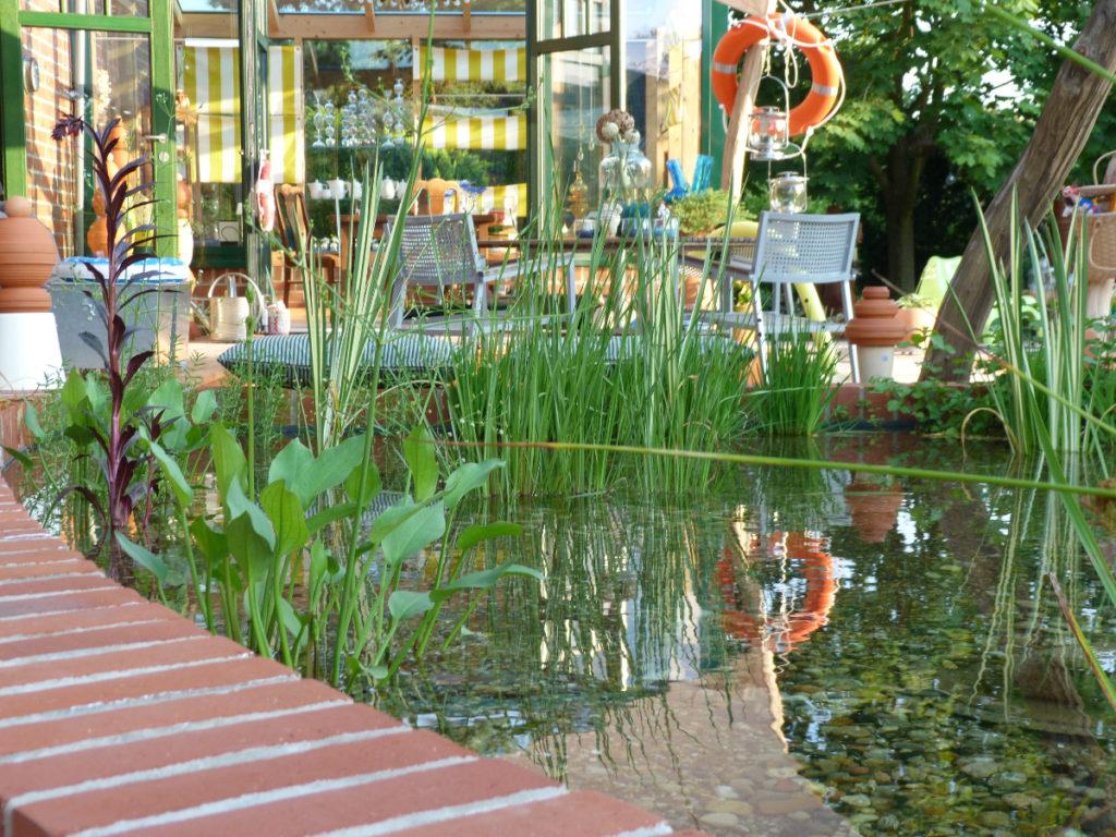 Separates Becken mit Wasserpflanzen