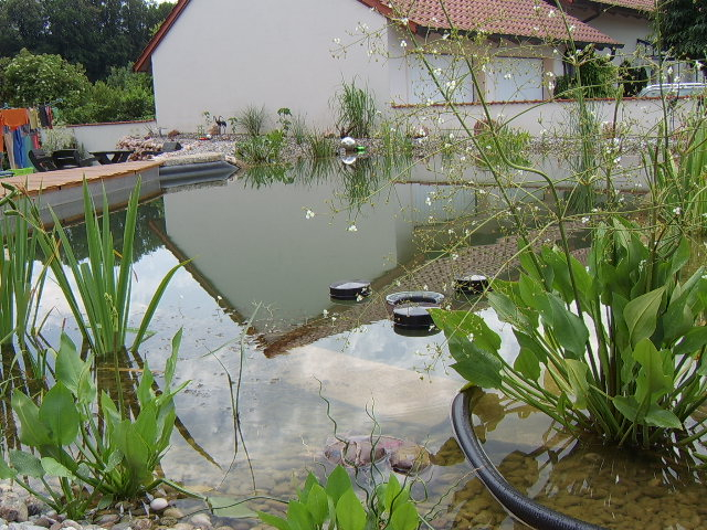 Fertiger Teich mit Begrünung