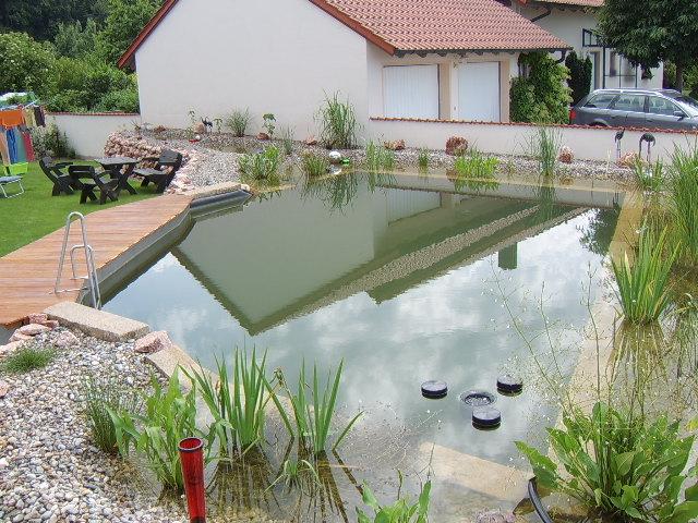 Fertiger Teich