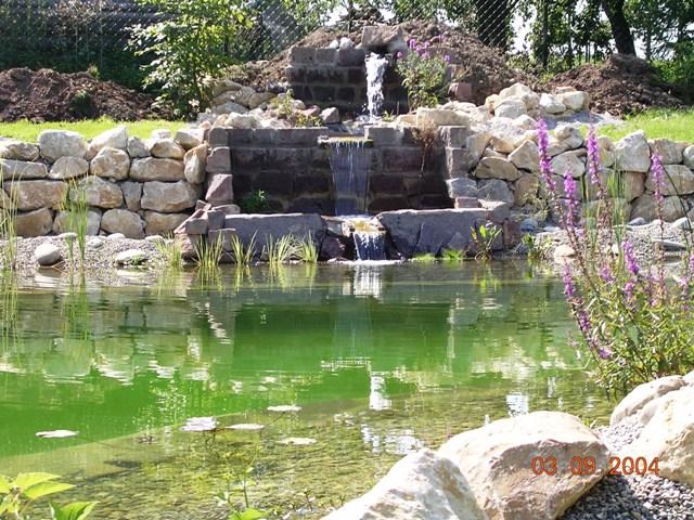 Fertiger Teich mit Wasserfall