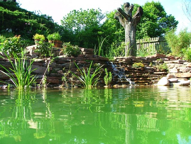 Teichmauer mit Wasserfall