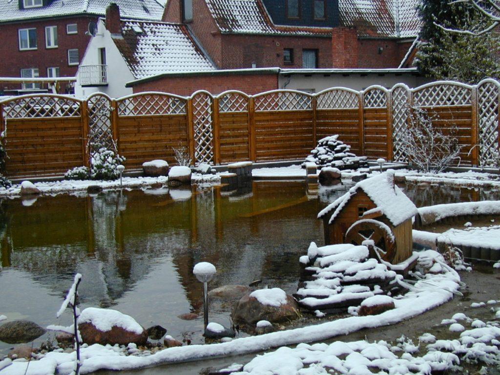 Teich im Winter